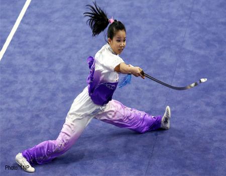 Taijijian شمشیر دو لبه تای چی