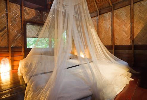 اقدامات احتیاطی مالاریا